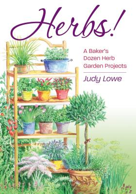 Dig, Plant, Grow! Herbs By Lowe, Judy/ Sears, Elayne (ILT)